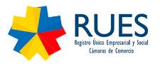 Logo-RUES